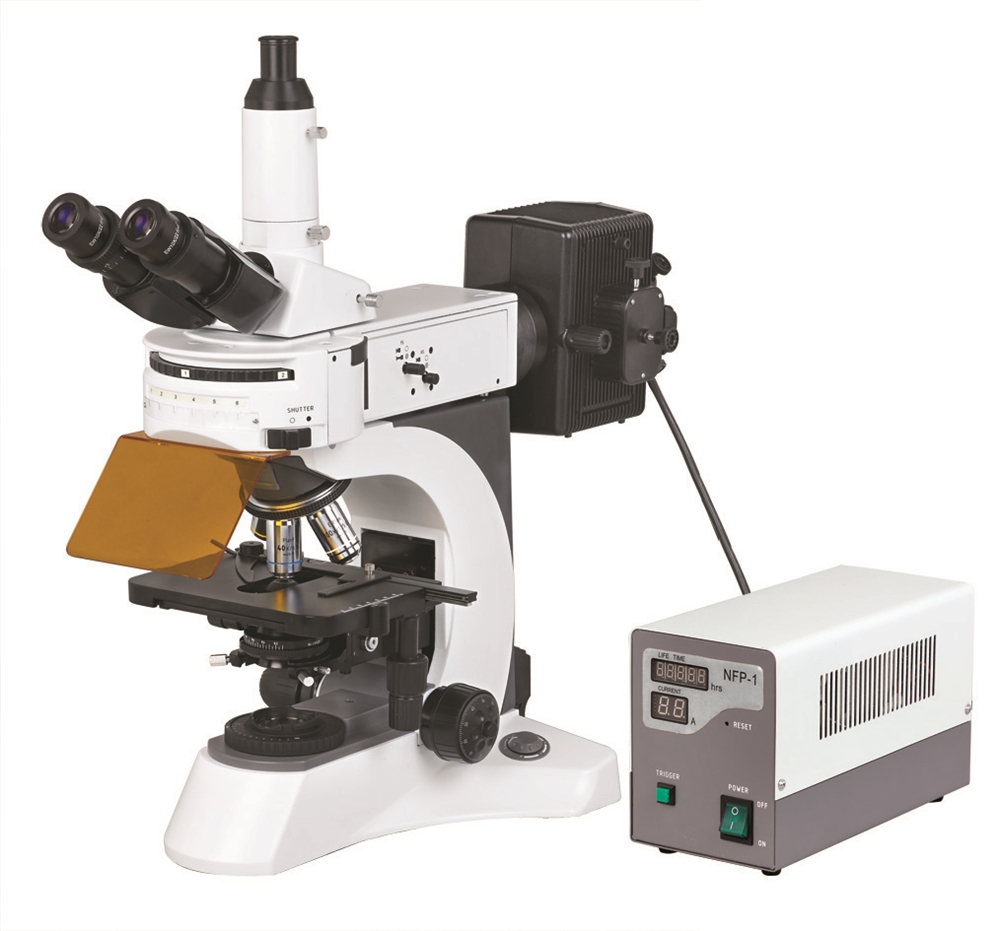 BS-7000A - Upright Fluorescent Biological Microscope